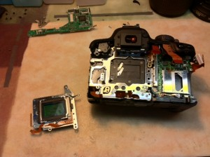 Disassembled Canon Digital Rebel XS